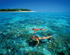 Đây là rạn san hô hùng vĩ và nổi tiếng nhất thế giới.