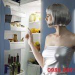 Hai Bệnh Thường Gặp Của Tủ Lạnh Và Cách Sửa Chữa Tại Nhà.